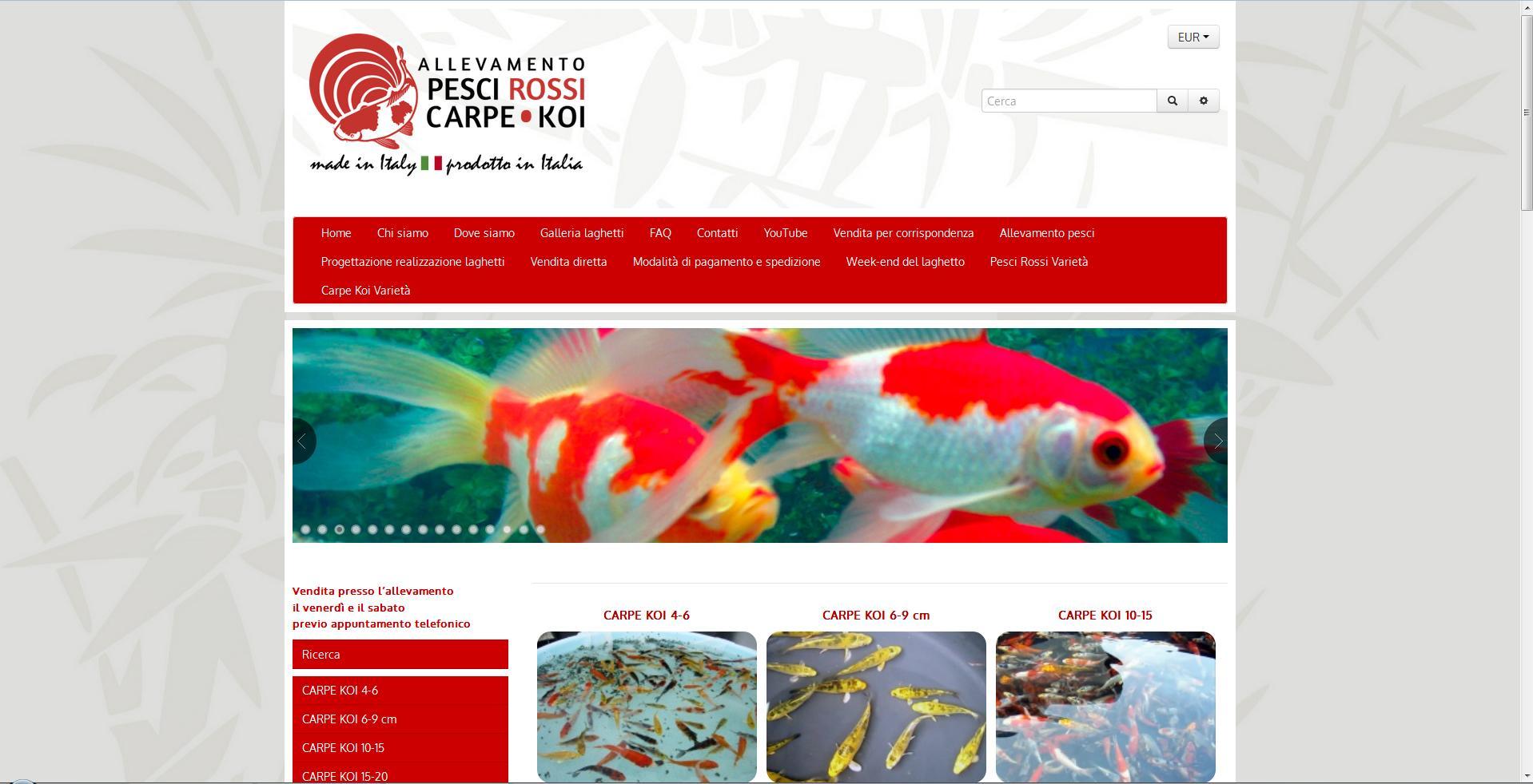Allevamento pesci rossi carpe koi - Allevamento carpe ...